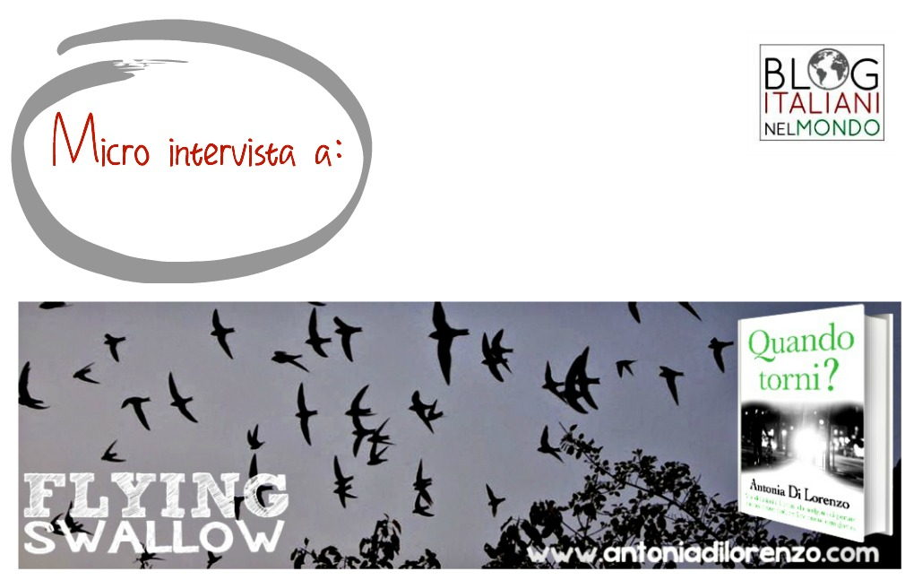 Micro intervista a Flying Swallow