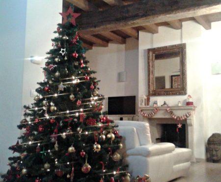 Tutto è pronto…Buon Natale!