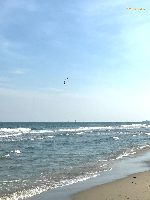 Il mare d'autunno